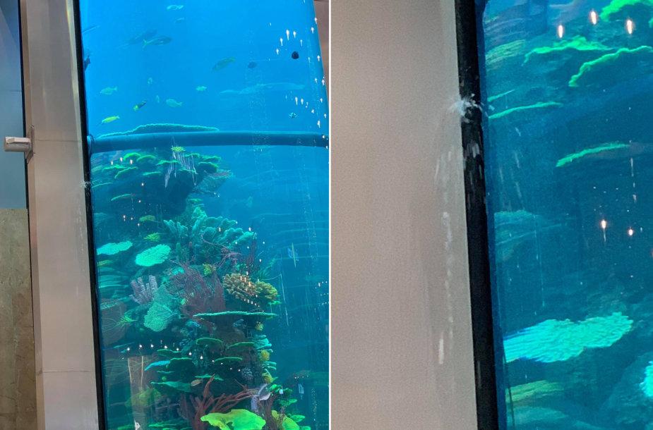 Vandens nuotėkis akvariume