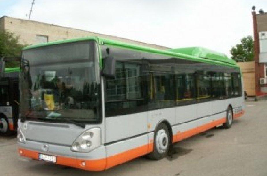 Į Klaipėdos gatves vasarą išriedės ekologiški autobusai.