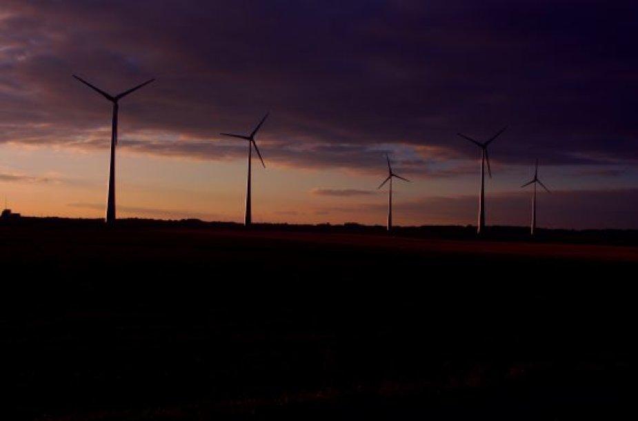 Vėjo jėgainės Šilutės rajone.
