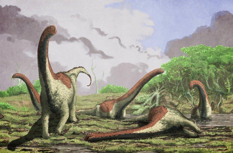 Titanozaurų atvaizdas Portsmuto universitete