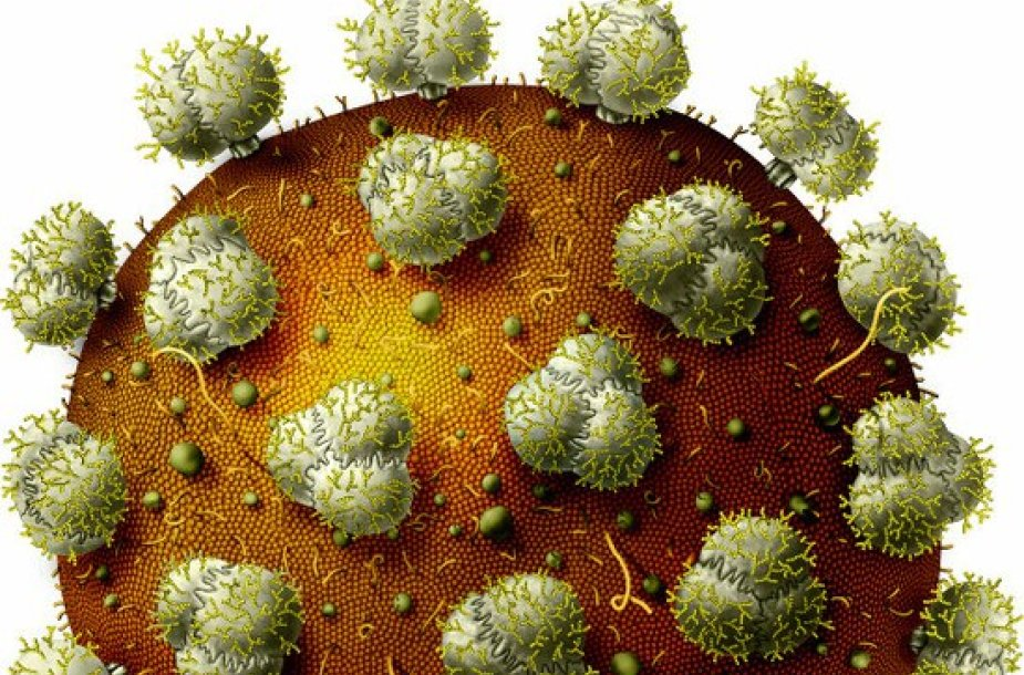 Žmogaus imunodeficito sindromą sukeliantis virusas