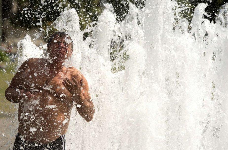 Vyras fontane