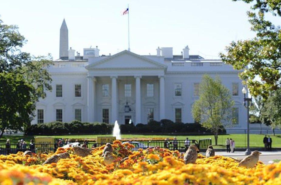 Baltieji rūmai
