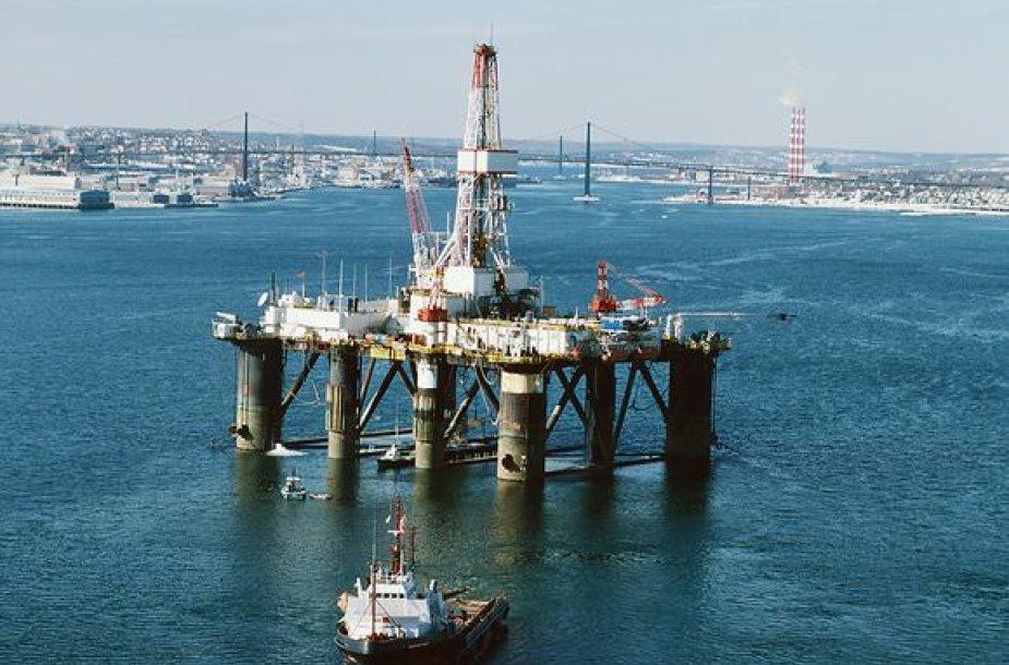 Naftos gavybos platforma