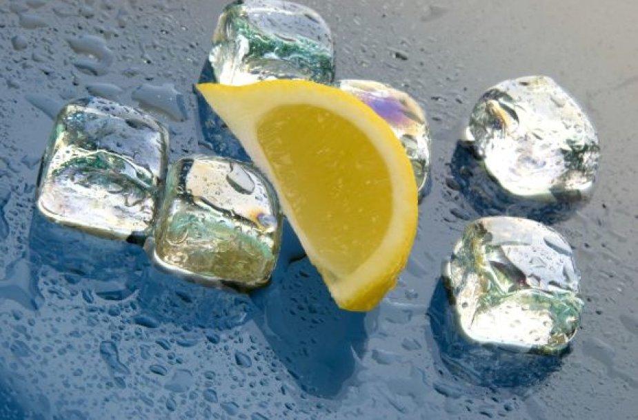 Ledukai ir citrina kokteiliui