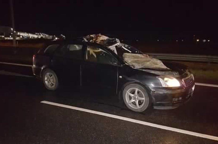 """Autostradoje Vilnius-Kaunas """"Toyota"""" partrenkė išbėgusį briedį"""