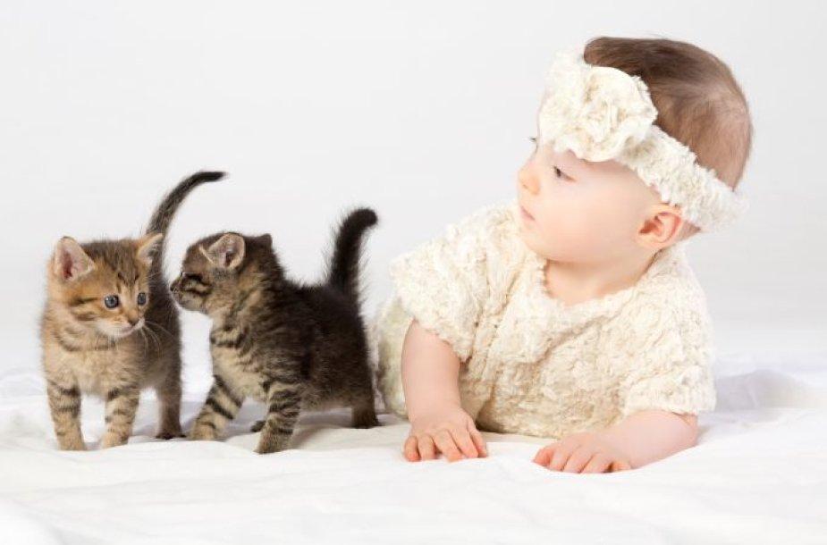 Kūdikis žaidžiai su kačiukais