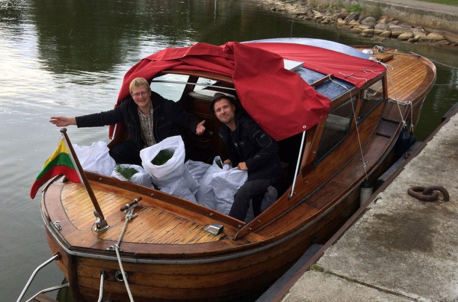 Pušų sodinukai į Klaipėdą keliavo laivu