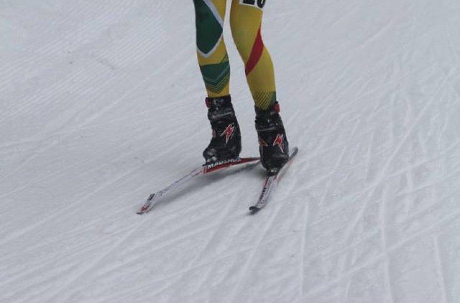 Vytautas Strolia čiuožė su sulūžusia slide
