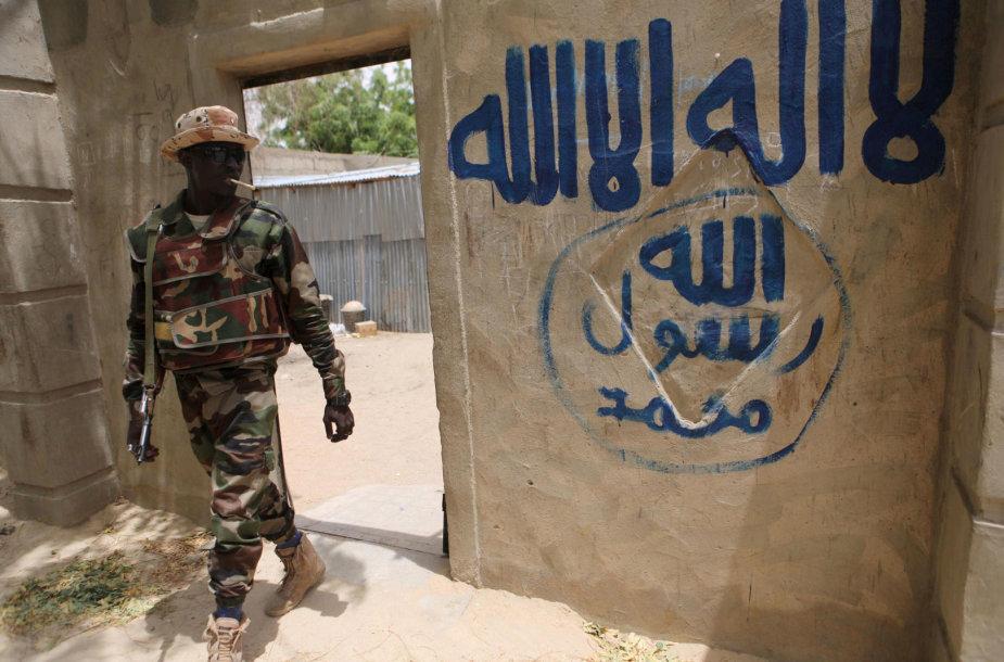 Nigerio karys