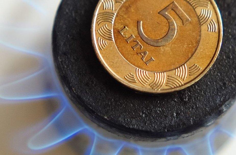 Penki litai ant dujinės viryklės