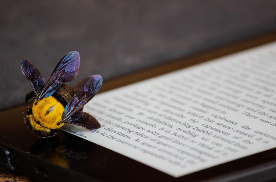 Daugybė mokslinių tyrimų patvirtino tiesą, kurią nujautė ir mūsų protėviai – jog bičių produktuose esama kone visų maisto medžiagų, reikalingų žmogaus organizmui.