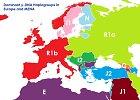 Kaip atrodytų Europos žemėlapis, jeigu sienos būtų nubrėžtos pagal žmonių DNR skirtumus