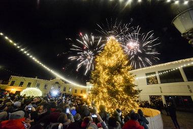 Klaipėdos Kalėdų eglė