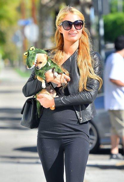 Paris Hilton su savo augintiniu
