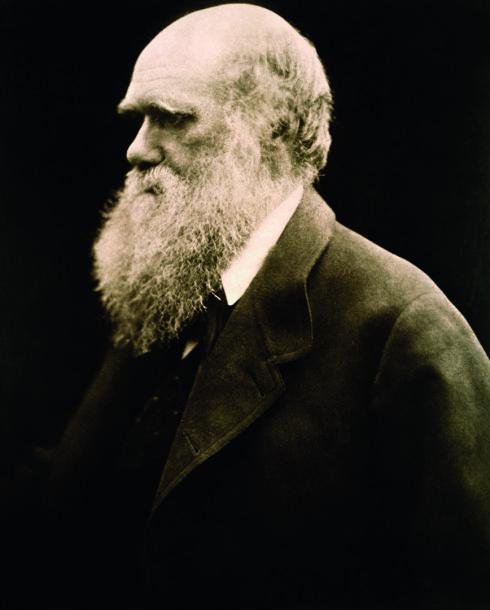Charlesas Darwinas, 1868 m.