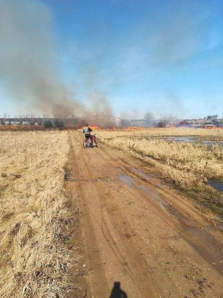 Žolės gaisras