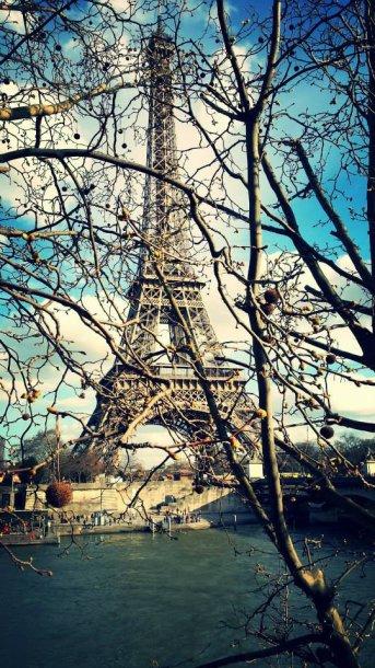 Žaluma dar nepaslėpė Eifelio