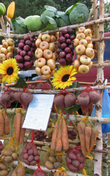 Ekologiškos daržovės